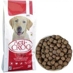 acti-croq dog energy