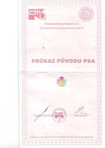 pp1 R